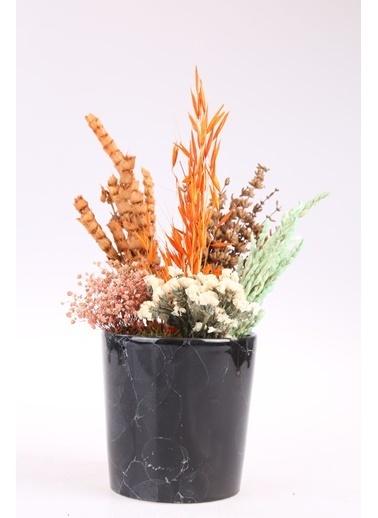 Kibrithane Çiçek Yapay Çiçek  Seramik Saksı Kuru Çiçek  Aranjman Kc00200772 Renkli